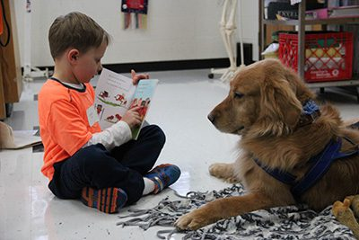 Lower schooler reading to therapy dog