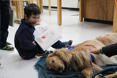 reading to therapy dog book festival 2018