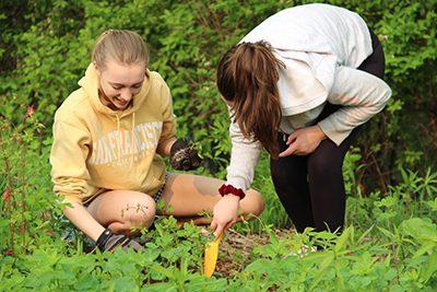 upper school students plant native plants around the pond