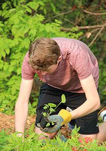 upper school student planting outdoors
