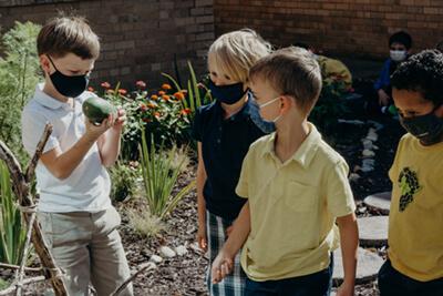 lower school students harvesting the garden